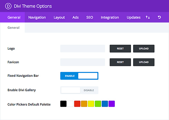 divi theme options